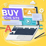 Buying niche site