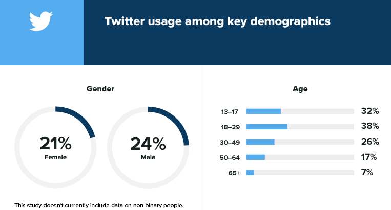 Twitter user demographics